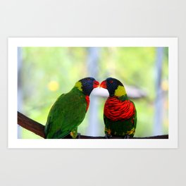 Rainbow Birds Art Print