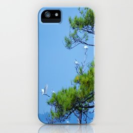 Flock of Cranes iPhone Case