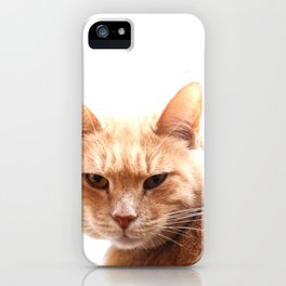 Red cat watching iPhone Case