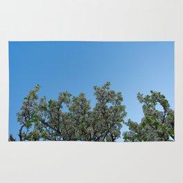 sky blossoms Rug