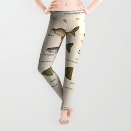 Illustrated Western Game Fish Identification Chart Leggings