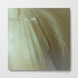 Garlic Skin Metal Print
