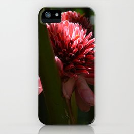 Memories of Guadeloupe iPhone Case