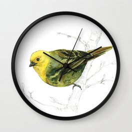 Mr Mohua , yellowhead New Zealand native bird Wall Clock