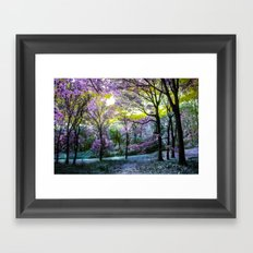 Find Your Terabithia Framed Art Print