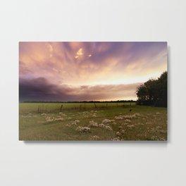 Wildflower Meadow at Sunset Metal Print