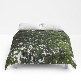 Umbrella Tree Comforters