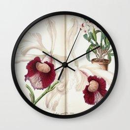 Flower laelia purpurata Wall Clock