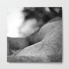 Slumber II Metal Print