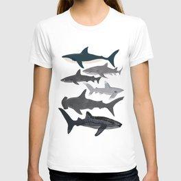 Sharks nature animal illustration texture print marine biologist sea life ocean Andrea Lauren T-shirt