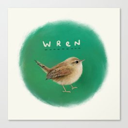 Wren Canvas Print