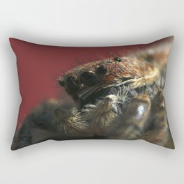 Spider on Red Rectangular Pillow