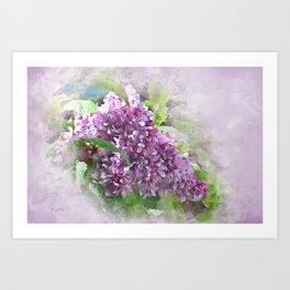 Soft Lilac Art Print