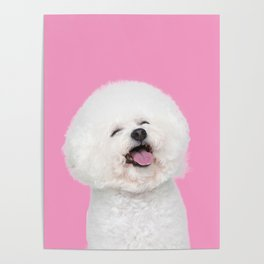 Laughing Puppy Poster