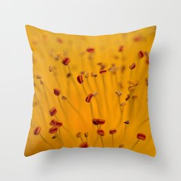 Fields of Red and Gold: Closeup of St. John's Wort Throw Pillow