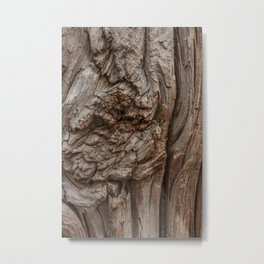 Abstract Tree Trunk Wood Texture with Wood Knot Metal Print
