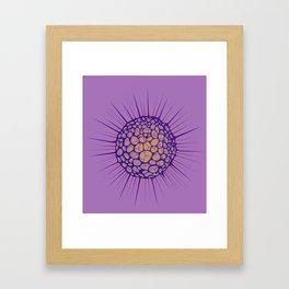 funky sea urchin Framed Art Print
