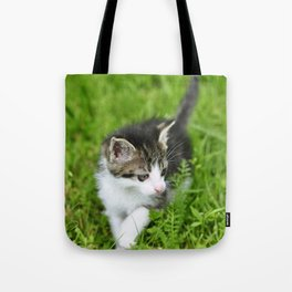 Kitten in the grass Tote Bag