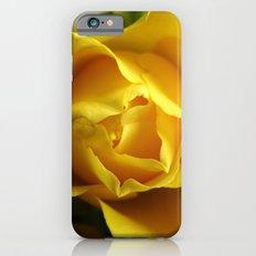Yellow Roses #3 Slim Case iPhone 6s
