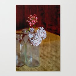 Vintage bottles with Viburnum flowers Canvas Print