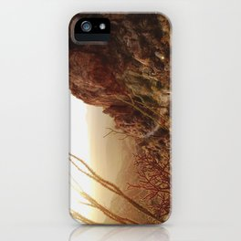 Desert Sunset Trail iPhone Case
