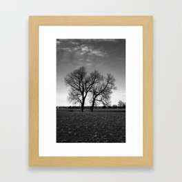 Concept nature : Two tree´s Framed Art Print