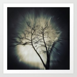 tree in dreamland Art Print
