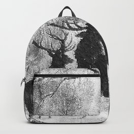 Winter storm Backpack