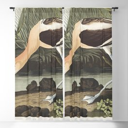 American Avocet from Birds of America (1827) by John James Audubon etched by William Home Lizars Blackout Curtain