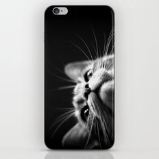 watching iPhone & iPod Skin