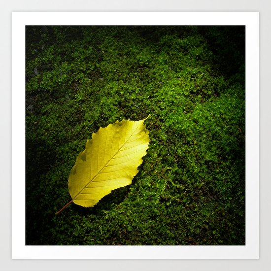 yellow autumn leaf I Art Print