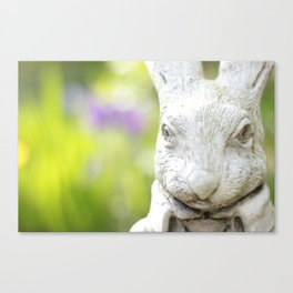 Garden Rabbit Canvas Print