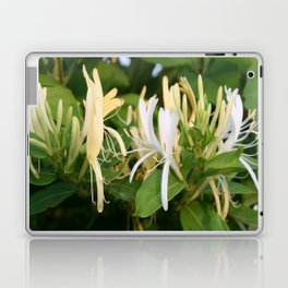 Closeup shot of Lonicera European Honeysuckle Flower Laptop & iPad Skin
