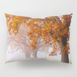 Oaks in the misty Autumn morning (Golden Polish Autumn) Pillow Sham