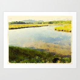Salt Grass Marsh Art Print