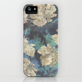 The world turns iPhone Case