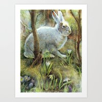 hare Art Prints featuring Hare by Natalie Berman