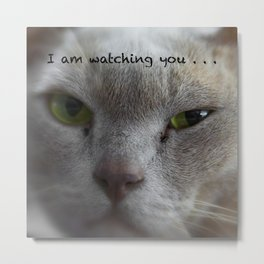 I am watching you . . . Metal Print