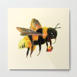 Bumble Bee carrying pollen illustration Metal Print