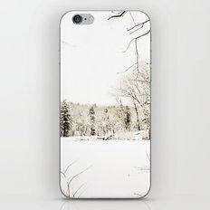 On Thin Ice iPhone & iPod Skin