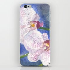 Orchid Gaze iPhone & iPod Skin