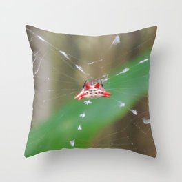 Colorful crab spider Throw Pillow