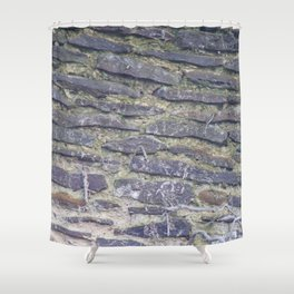 Brick Texture Shower Curtain