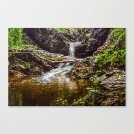 Ducklings swimming at the waterfall Canvas Print