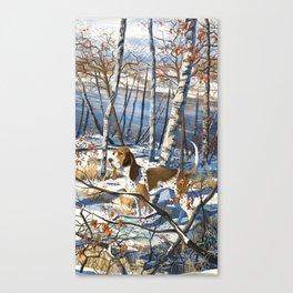Coonhound Canvas Print