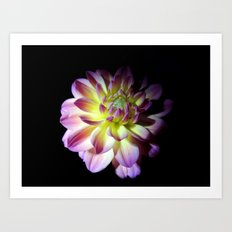 Blooming in the Darkness Art Print