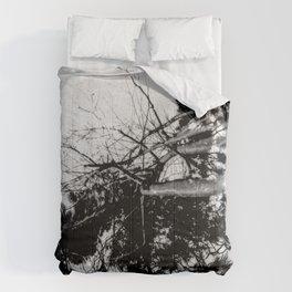Seeing Double Comforters