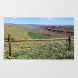 Red Canyon Rug