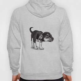 Cute cautious puppy wagging it's tail. Hoody