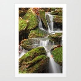 Mossy Rohrbaugh Waterfall Art Print